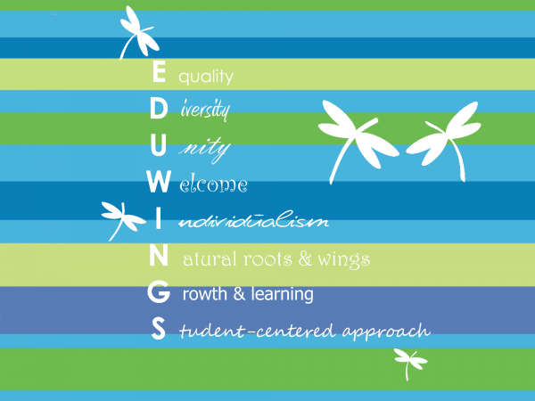 Eduwings core values